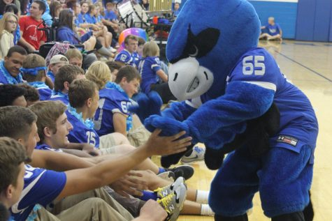 Who is Bernie the Blue Jay?