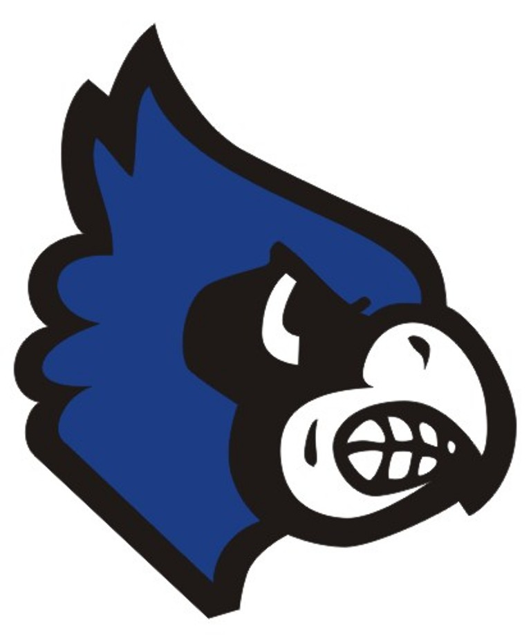 The Washington Hockey Club uses the same Blue Jay logo even though they are not sponsored by Washington High School.