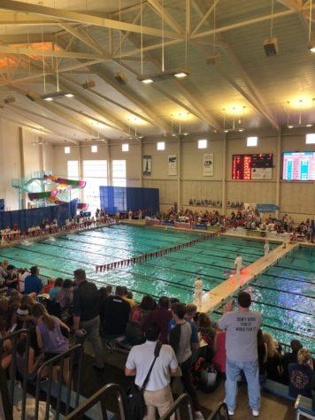 Freshman makes swim history