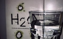 'H2O' by Virginia Bergin will leave you thirsty for more