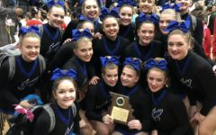WHS cheer 'hits zero' at state competition, places 2nd